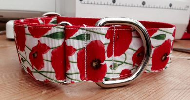 Poppy Red And White