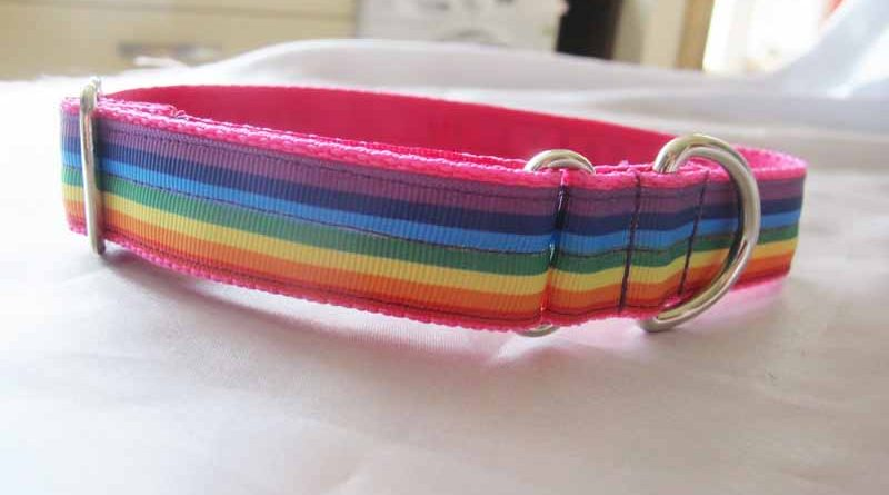 "Rainbow 1"" Satin Lined House Collar"