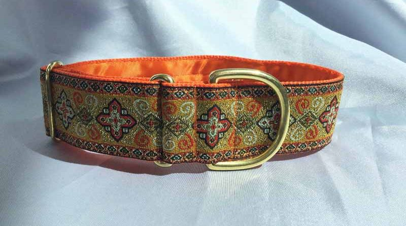 "Peek A Orange 1.5"" Satin Lined House Collar"