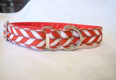 Candy 1″ Satin Lined House Collar