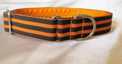Freddy 1″ Satin Lined House Collar