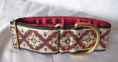 Galloway Burgundy 2″ Satin Lined House Collar