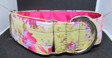 Charlotte 1.5″ Satin Lined Soft Cotton House Collar