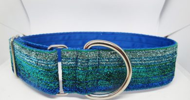 1.5″ Tinkerbell Blue And Green Satin Lined House Collar