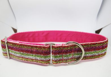 1″ Tinkerbell Multi Satin Lined House Collar