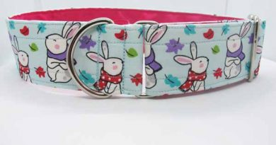 Pink Satin Lined Hoppy Days Cotton House Collar